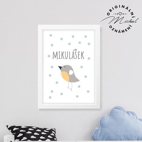 Ptáček SE JMÉNEM NA PŘÁNÍ - plakát