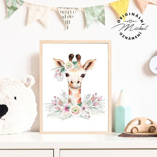 50 - Žirafka květy