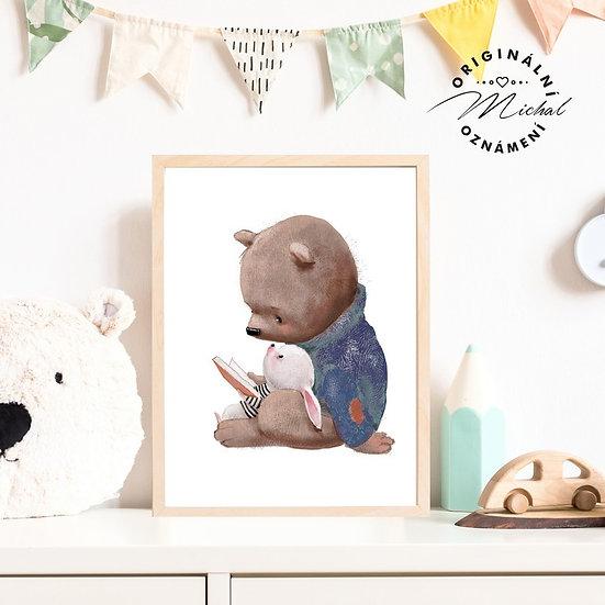 Plakát medvěd medvídek čtenář