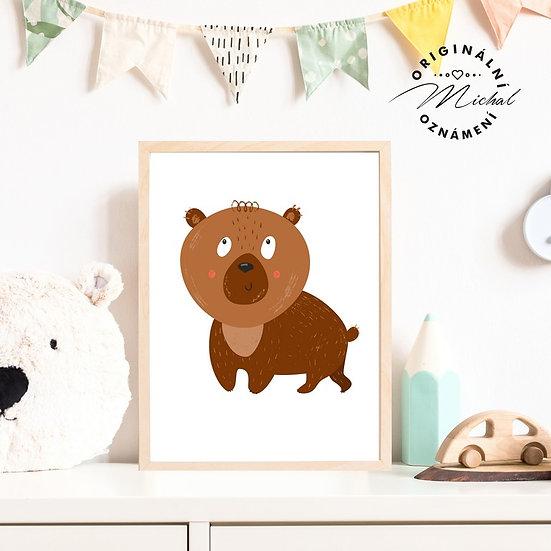 Plakát medvěd Oldřich