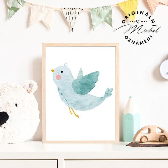 Plakát ptáček