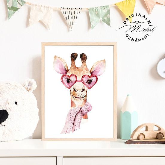 53 - Žirafka brýle