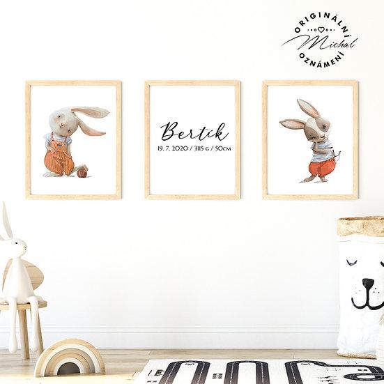 Plakát set zajíčkové rošťáci se jménem