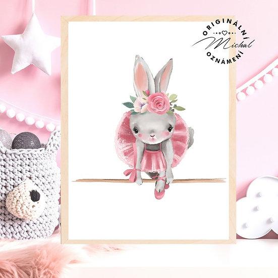 Plakát zajíček baletka růžový