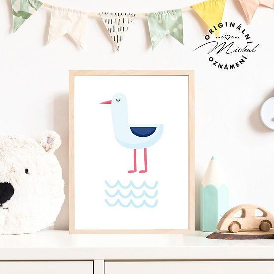 Plakát racek Vilda moře
