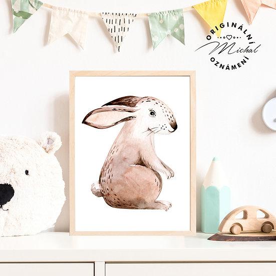 Plakát zajíček Bambulka
