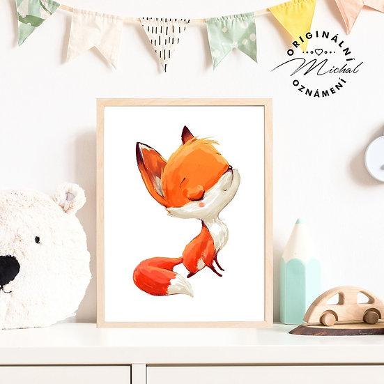 Plakát liška lišák Robin