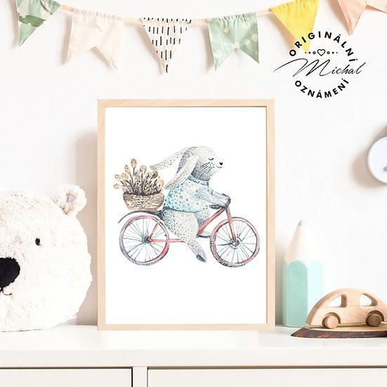 Plakát zajíček na kole