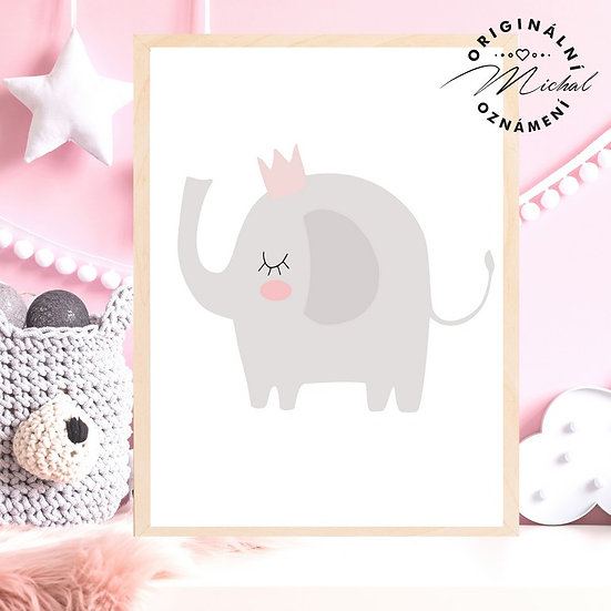 Plakát sloneček s korunkou pro holčičky