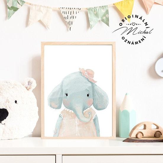 Plakát sloní holčička sloneček