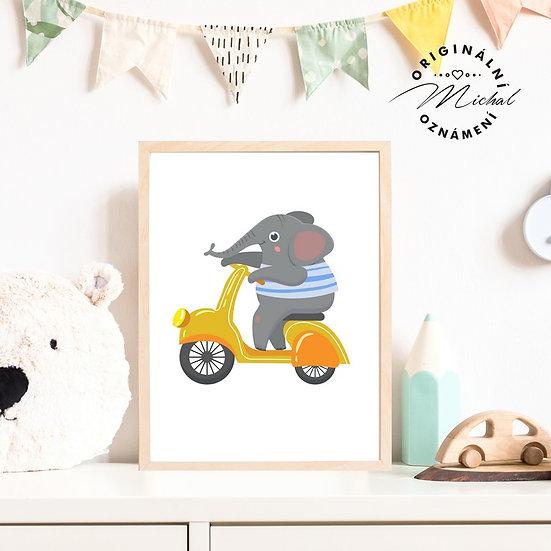 Plakát motorka sloník závodník