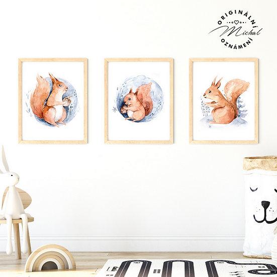 Plakát veverky rodina lesní zvířátka set