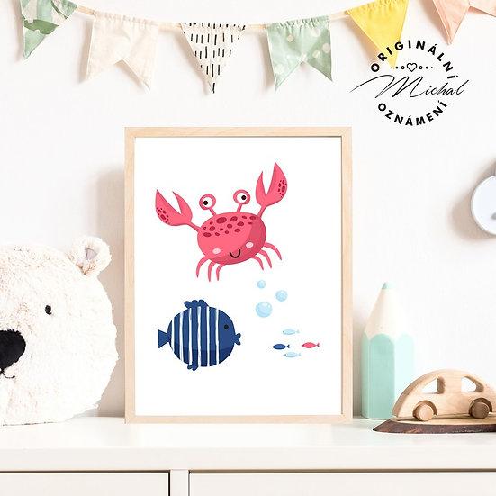 Plakát krab krabík námořníci