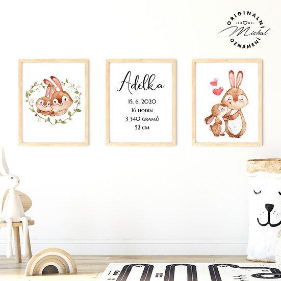 Plakát set zajíčkové a údaje o narození