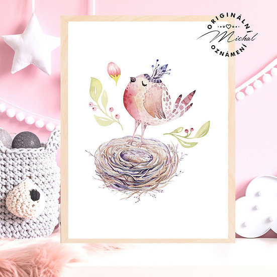 Plakát ptáček ptáčátko