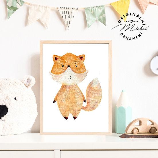 Plakát liška Eda