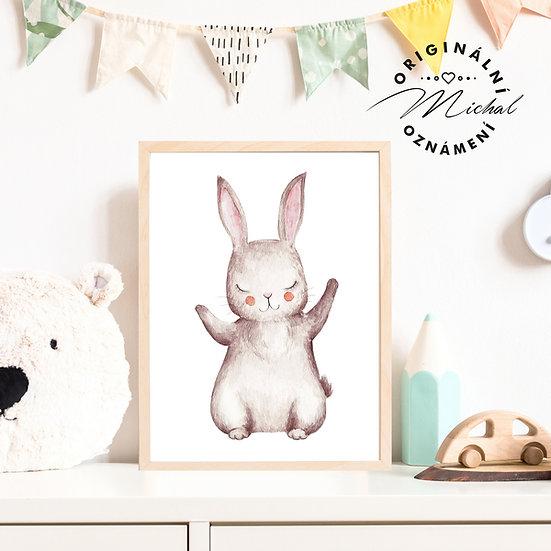 Plakát Zajíček Objímáček