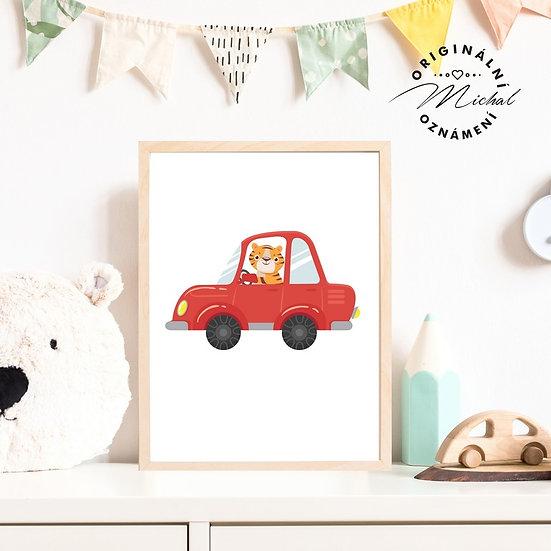 Plakát tygřík auto pro kluky