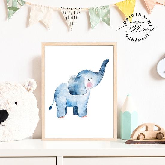 Plakát sloník slůně Jenda