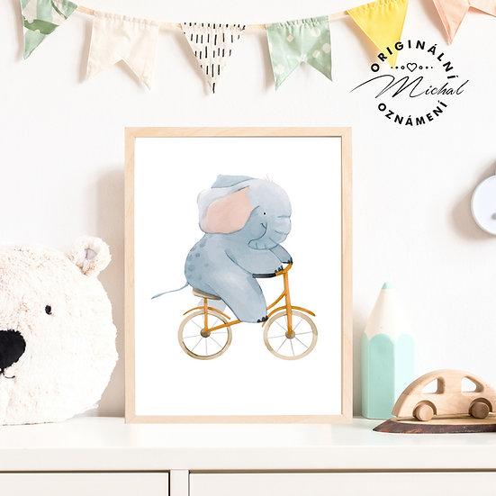 Plakát slon sloník na kole