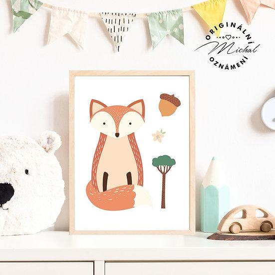 Plakát liška Šárka