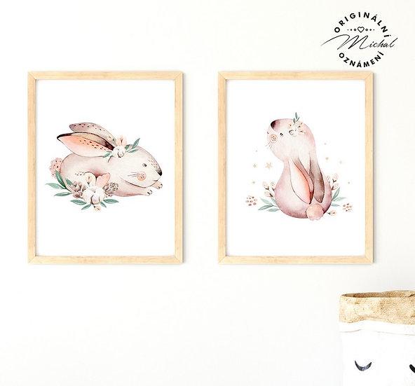 Plakát set zajíčkové mláďátka