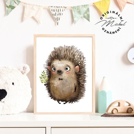 Plakát pan ježeček Bodlinka