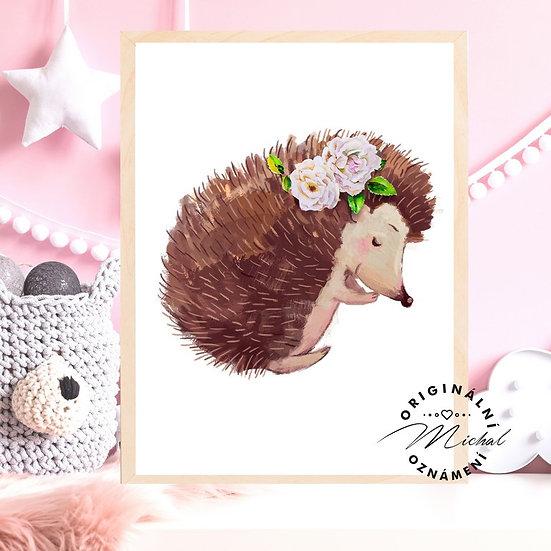 Plakát spinkající ježeček