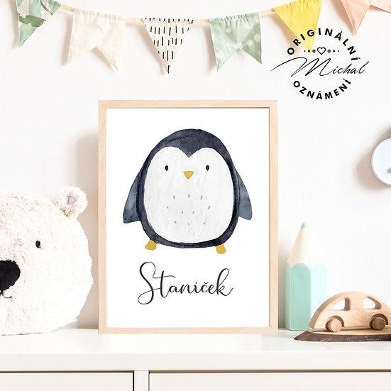 Plakát se jménem tučňáček 72