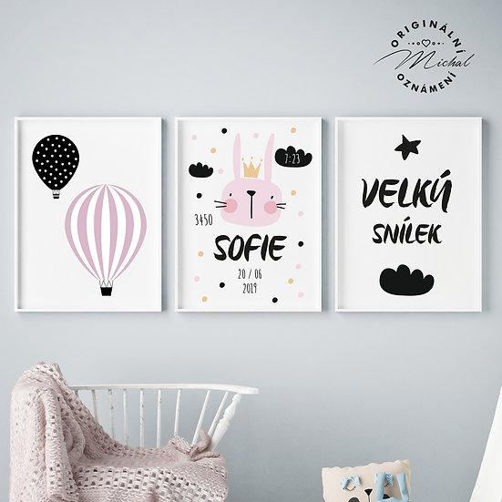 Plakáty s údaji narození - holčička - set
