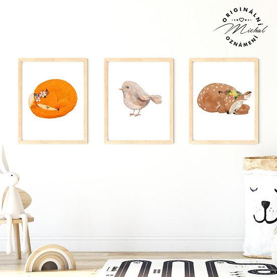 Plakát set liška, koloušek, ptáčátko