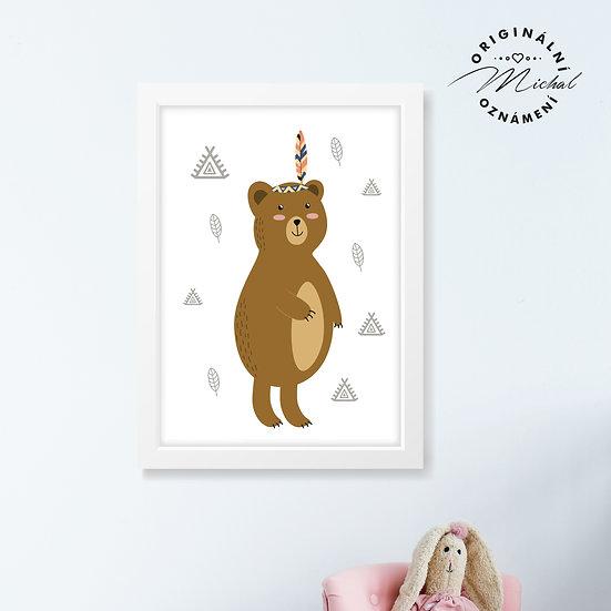 Medvědice Alice – plakát