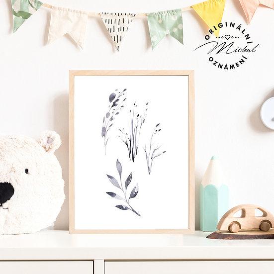 Plakát rostliny