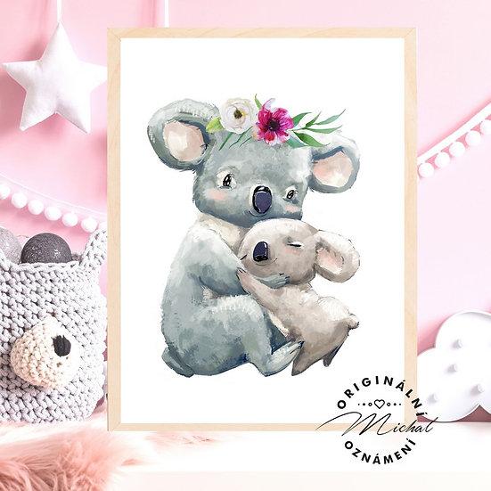 Plakát koala s mláďátkem