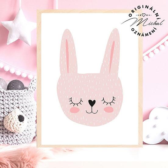 Plakát růžový zajíček Pink