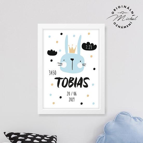 Plakátek s údaji narození - chlapeček