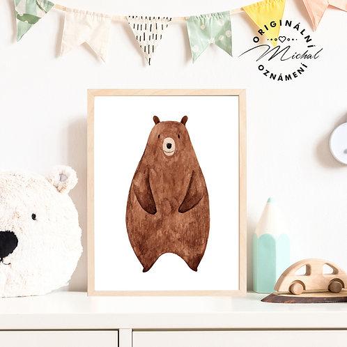 Plakát lesní medvídek
