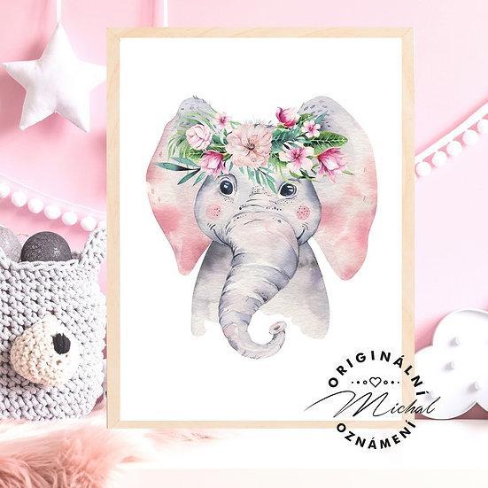 Plakát slon slonice pro holčičky