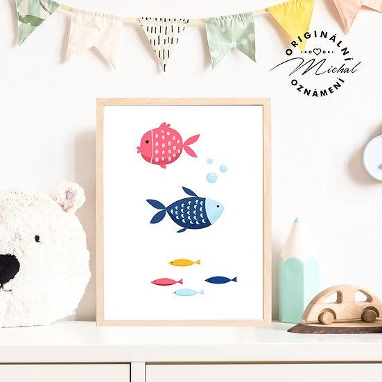 Plakát hejno rybiček