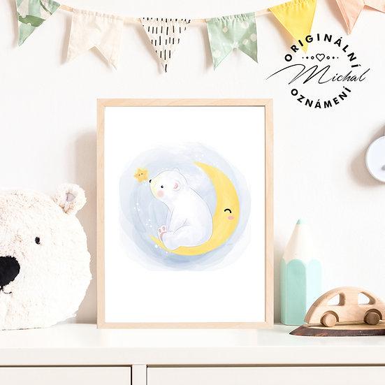 Plakát lední medvídek