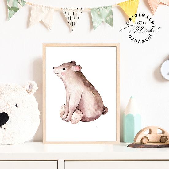 Plakát medvídek Gustav