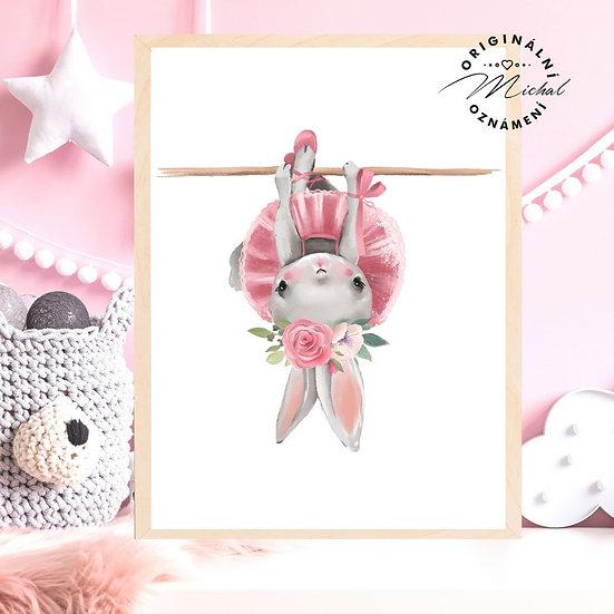Plakát baletka pro holčičky