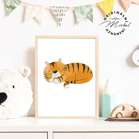 Plakát tygr Kuba