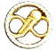BADGE PINS INSIGNE AFCP-min.png