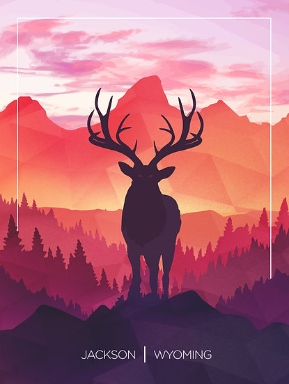 Elk | Jackson, Wyoming
