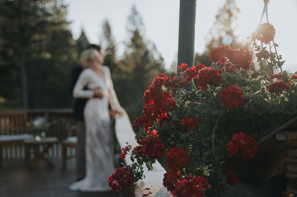 Commercial Wedding Shoot