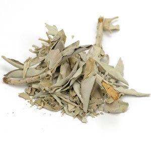 White Sage, leaves