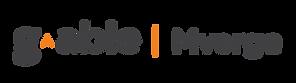 Logo_Mverge-300x84.png