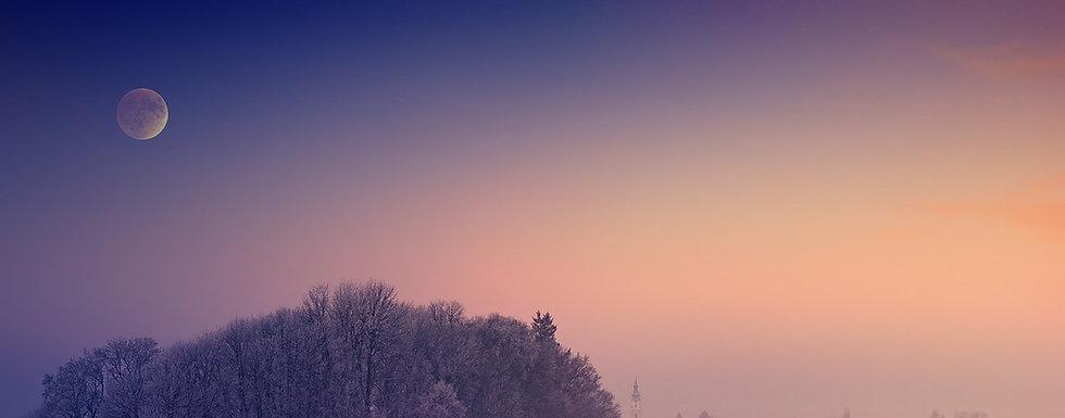 winter-4557798_1280_edited_edited.jpg