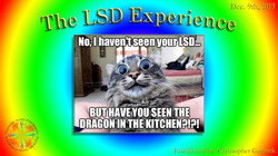 The LSD Experience Meetup Photo 2